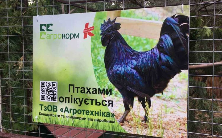 """""""Пан Курчак"""" та """"Агротехніка"""" опікуватиметься птахами Луцького зоопарку"""